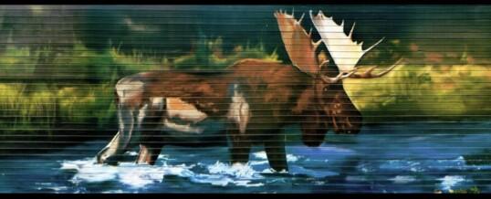 Der Jäger und der Elch