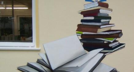 """Neukloster """"Stadtbibliothek"""""""